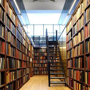 Библиотеки Верхнего Мамона
